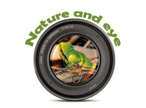 A 3-a editie a concursului de fotografie Nature and Eye
